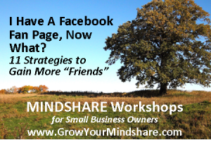 Mindshare Marketing Workshop: I Have a Facebook Fan Page, Now What?